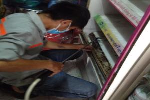 Diệt mối tận gốc tại Hà Nội