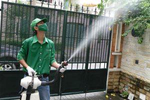 Dịch vụ phun muỗi – Hiệu quả bền lâu