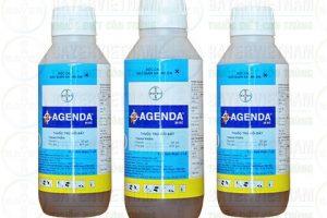 Thuốc phòng mối Agenda 25EC